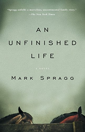 An Unfinished Life (Paperback)