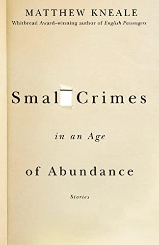 9781400079575: Small Crimes in an Age of Abundance