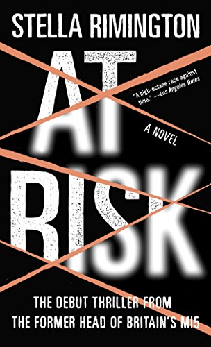 9781400079810: At Risk: A Novel