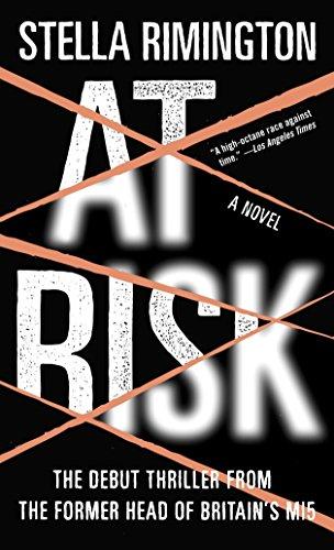 9781400079810: At Risk: A Novel
