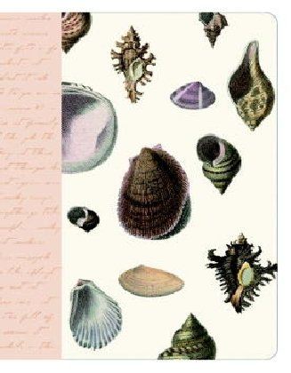 9781400081790: Seashell Journal