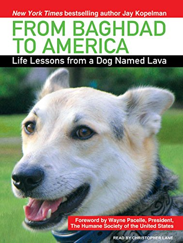 9781400158751: From Baghdad to America: Life Lessons from a Dog Named Lava