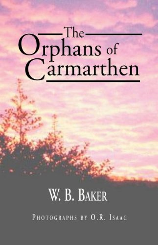 The Orphans of Carmarthen (1401004024) by Williams, Rowan