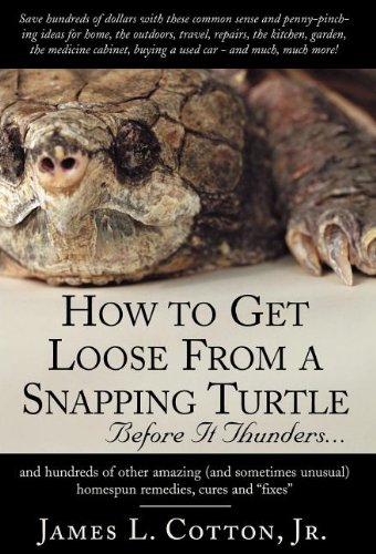 9781401081119: How to Get Loose from a Snapping Turtle - Before It Thunders