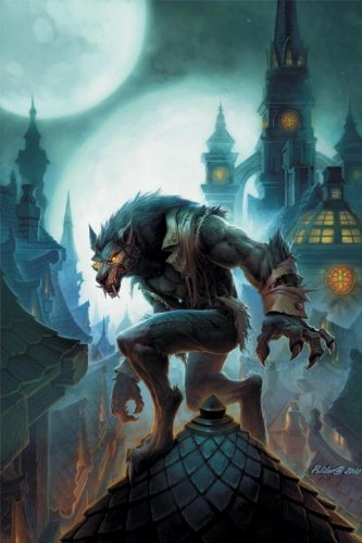 9781401232672: World Of Warcraft Curse Of The Worgen HC