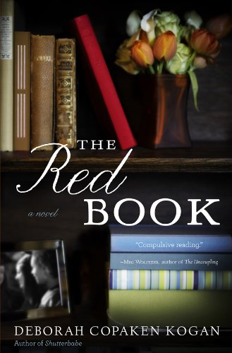 9781401340827: The Red Book