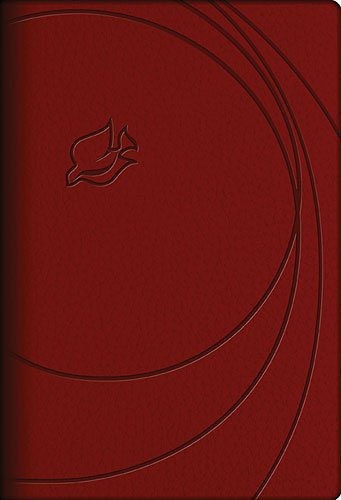 9781401675004: NLT, New Spirit-Filled Life Bible, Imitation Leather, Red: Kingdom Equipping Through the Power of the Word