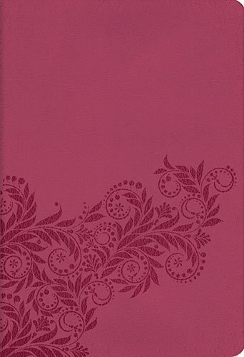 9781401677329: Holy Bible: New King James Version, Reference Edition, Light Cranberry Leathersoft, Classic Series
