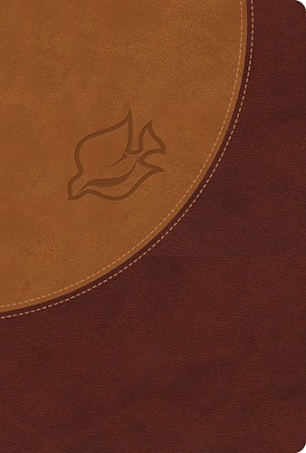 9781401679309: NIV, New Spirit-Filled Life Bible, Imitation Leather, Brown/Tan: Kingdom Equipping Through the Power of the Word (Signature)