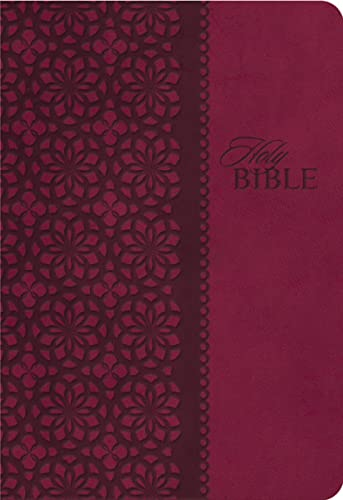 9781401680336: KJV Study Bible, Imitation Leather, Red/Pink, Indexed, Red Letter Edition: Second Edition