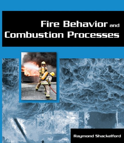 9781401880163: Fire Behavior and Combustion Processes