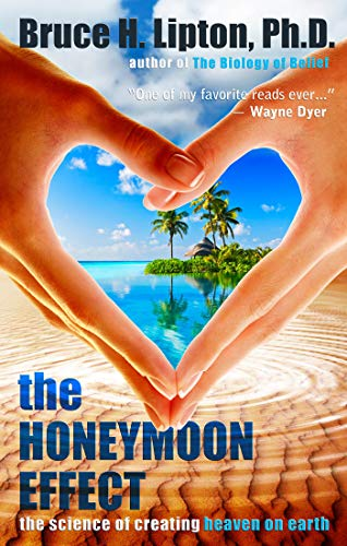 9781401923891: The Honeymoon Effect: The Science of Creating Heaven on Earth