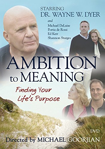9781401924225: Ambition to Meaning: Finding Your Life's Purpose