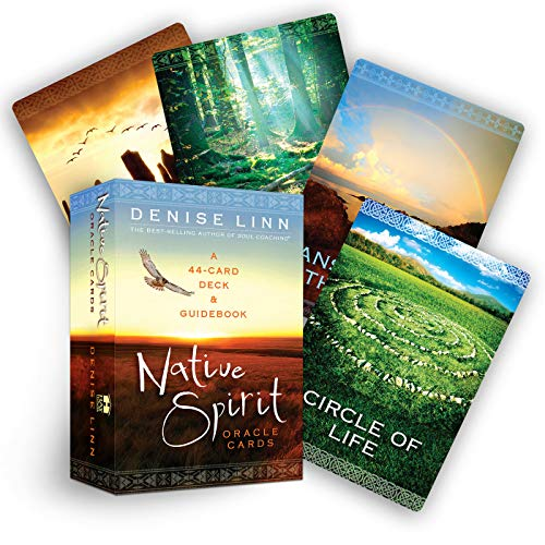 9781401945930: Native Spirit Oracle Cards: A 44-Card Deck & Guidebook: A 44-Card Deck and Guidebook
