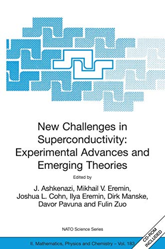New Challenges in Superconductivity: Experimental Advances and Emerging Theories: Proceedings of ...