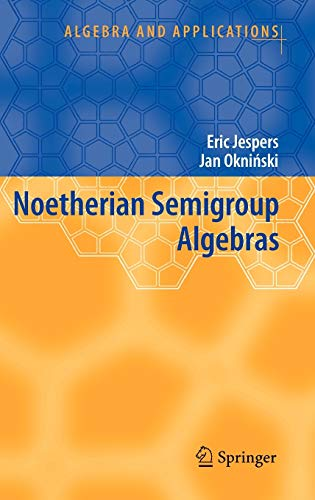9781402058097: Noetherian Semigroup Algebras (Algebra and Applications)