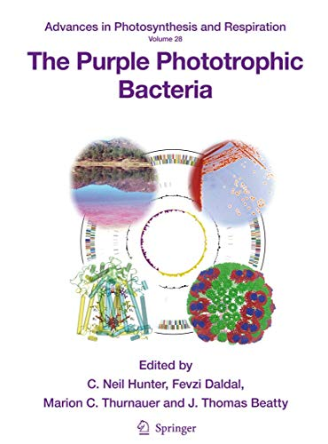 The Purple Phototrophic Bacteria (Advances in Photosynthesis and Respiration): Springer