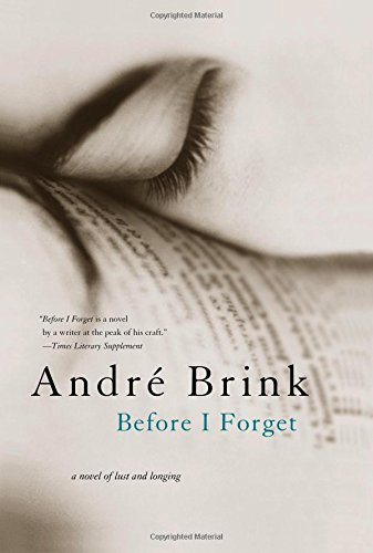 9781402208669: Before I Forget: A Novel