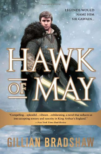 9781402240706: Hawk of May (Down the Long Wind)