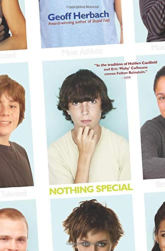9781402265075: Nothing Special (Felton Reinstein trilogy)