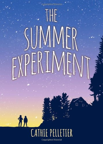 9781402285783: The Summer Experiment