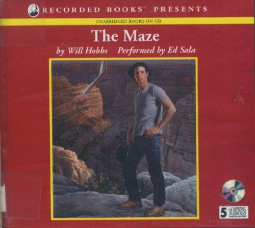 9781402523199: The Maze