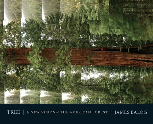 Tree: A New Vision of the American Forest: Balog, James