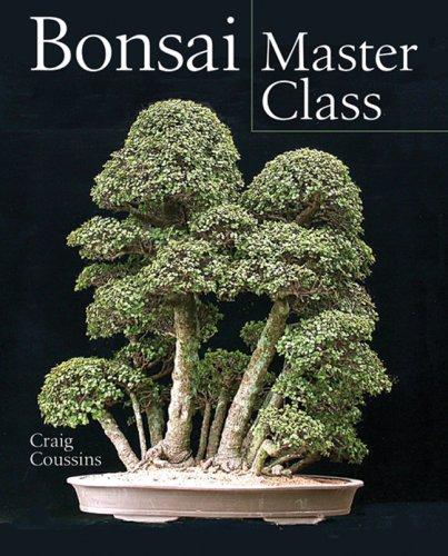 9781402735479: Bonsai Master Class