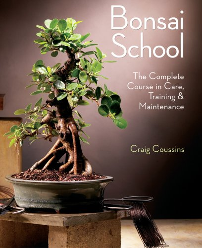 9781402735608: Bonsai School: The Complete Course in Care, Training & Maintenance