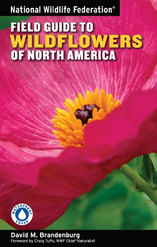 9781402741548: National Wildlife Federation Field Guide to Wildflowers of North America