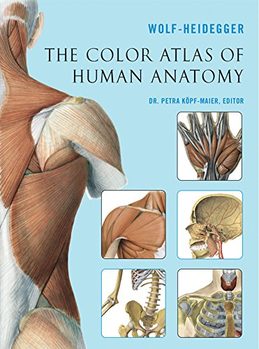 9781402742002: The Color Atlas of Human Anatomy