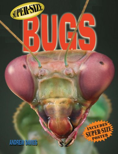 9781402753404: Super-Size Bugs