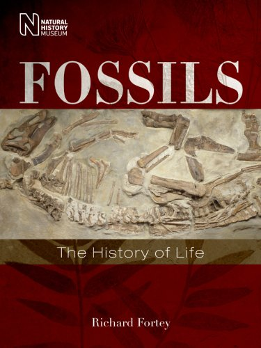 9781402762543: Fossils: The History of Life