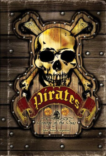 9781402763113: Pirates: Scourge of the Seas