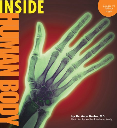 Inside Human Body (Paperback)