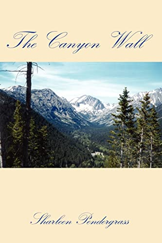 9781403397744: The Canyon Wall