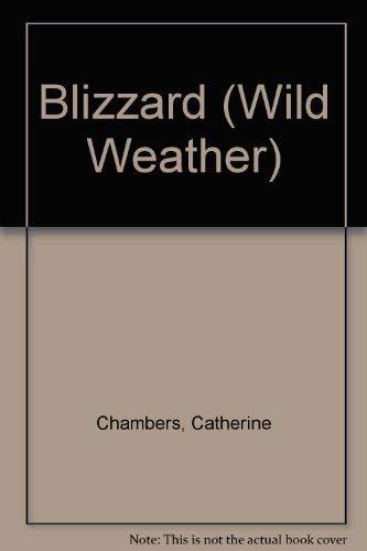 9781403401106: Blizzard (Wild Weather)