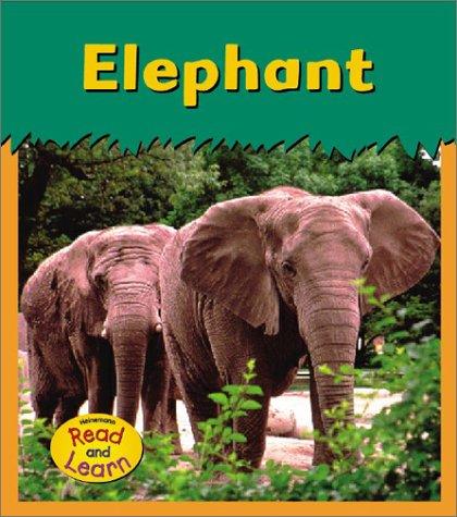 9781403406439: Elephant (Zoo Animals)