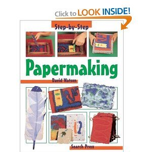 9781403407054: Papermaking (Step by Step)