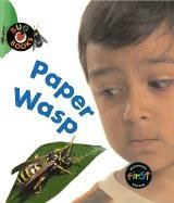 Paper Wasp (Bug Books): Harris, Monica