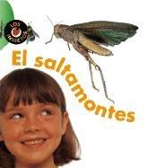 El Saltamontes = Grasshopper (Insectos) (Spanish Edition): Karen Hartley, Philip