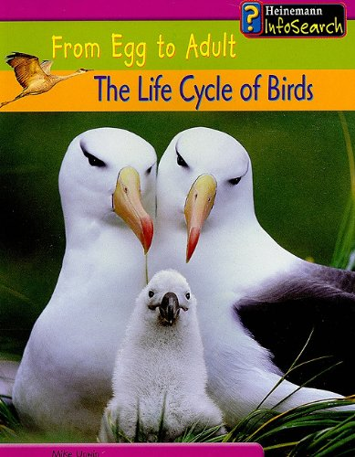 9781403434043: The Life Cycle of Birds (From Egg to Adult)