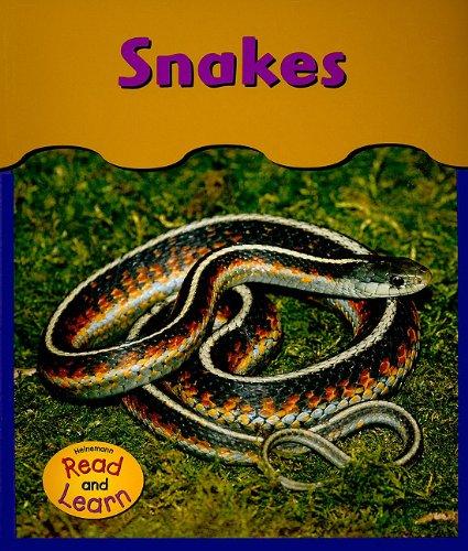 9781403443298: Snakes (Under My Feet)