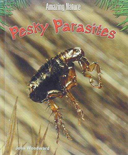 9781403447074: Pesky Parasites (Amazing Nature)