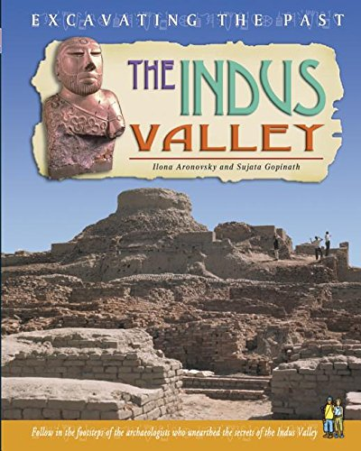 9781403454607: The Indus Valley (Excavating the Past)