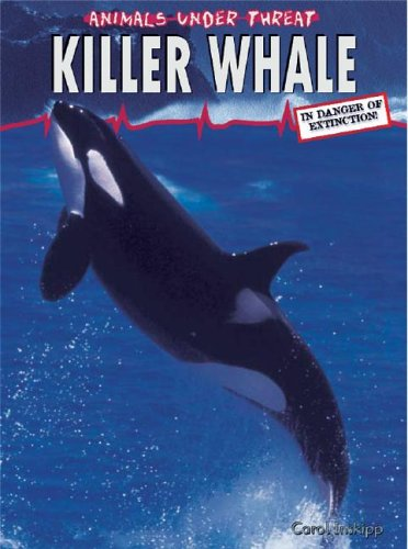 9781403455840: Killer Whale (Animals Under Threat)