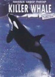 9781403456915: Killer Whale (Animals Under Threat)