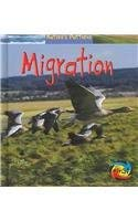 Migration (Nature's Patterns) (9781403458797) by Monica Hughes
