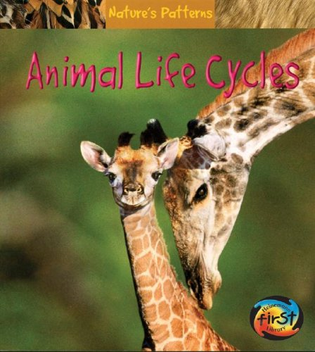 9781403458940: Animal Life Cycles (Nature's Patterns)