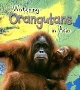 9781403472441: Watching Orangutans in Asia (Wild World)